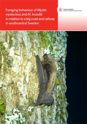 Bild på Foraging behaviour of Myotis mystacinus and M. brandtii in relation to a big road and railway in southcentral Sweden